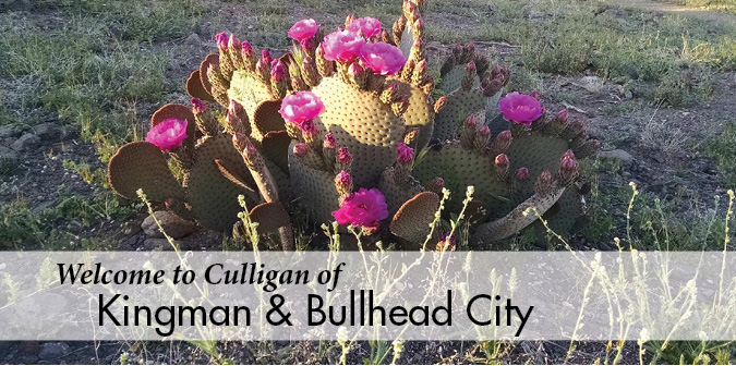 Welcome to Culligan Kingman and Bullhead City